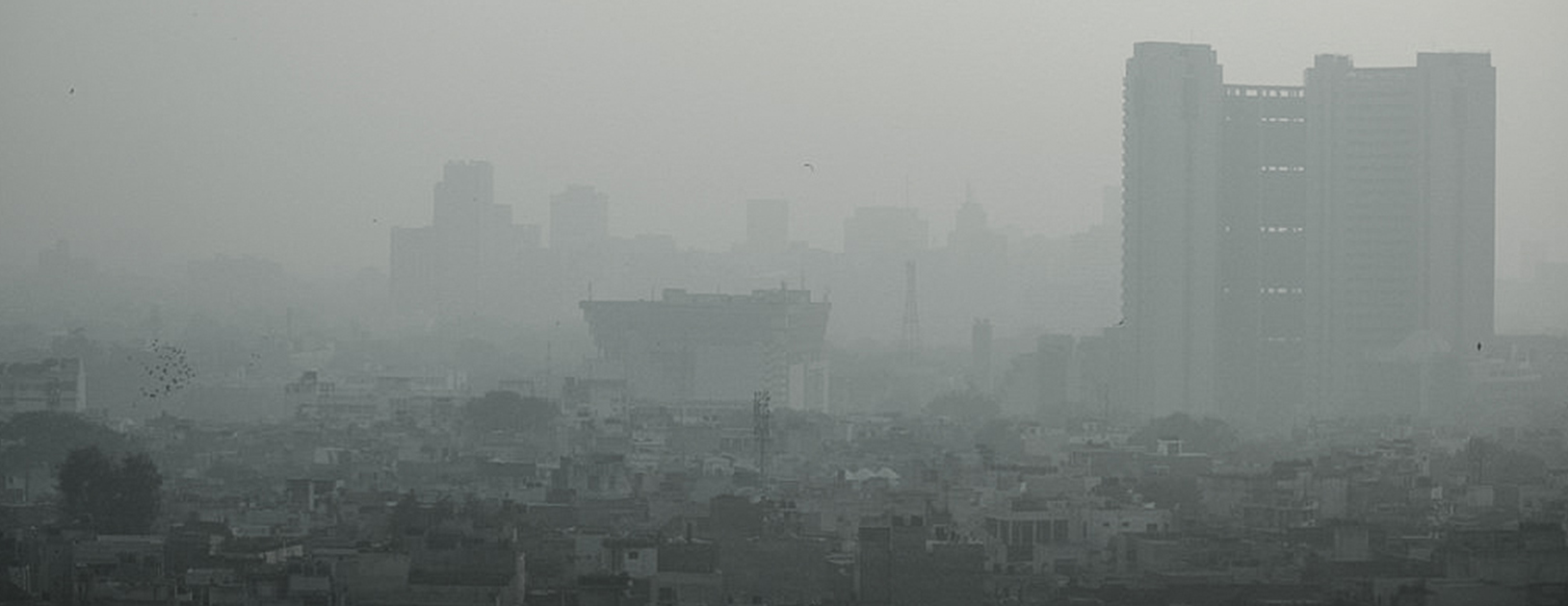 pollution in big cities essay Essay: marine life pollution introduction: pollution can be defined in different prospective including economics the economics definition of pollution for many years cities have struggled through thick smog due to dense smoke emissions officials, like in los angeles, have tried to adopt multiple.